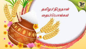 Image result for தைப்பொங்கல்