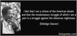 The American Dream Quote Best of Quotes About Achieving The American Dream 24 Quotes