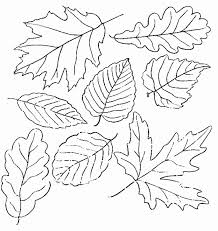 Small Picture Leaves Coloring Pages Printable Kids Coloring