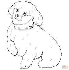 Small Picture Adult dog coloring page Dog Coloring Page Pdf Dog Coloring Pages