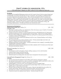 Public Accounting Resumes Job Resume Certified Public Accountant