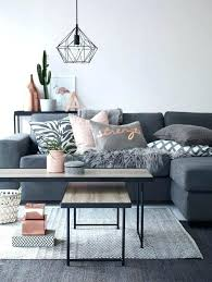 gray couch decor super rugs with grey best ideas on neutral living room dark decorating what
