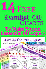 Aromatherapy Scent Chart 14 Free Printable Essential Oil Charts Young Living