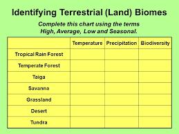 Taiga Temperature Chart 59 Always Up To Date Desert Precipitation Chart