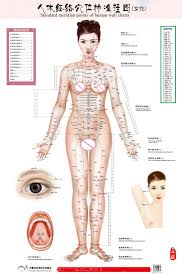 Us 17 0 5 Off Standard Meridian Points Of Human Wall Chart Male Female Acupuncture Massage Point Map Flipchart Hd 3 Chinese And English In Massage