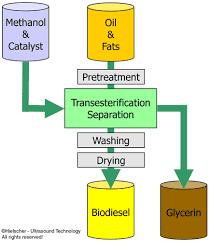 Biodiesel Production Chart Ultrasonics Improve Biodiesel Process Efficiency Hielscher