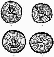 Большой Каталог Рефератов Реферат Свойства древесины как  Пороки древесины