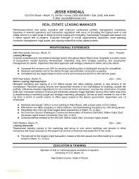 Resume Template For Real Estate Agents Or Mercial Property Manager