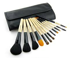 makeup and skin ideas with makeup addiction brushes with high quality makeup brush set colorshine 12