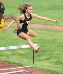 Image result for hurdles