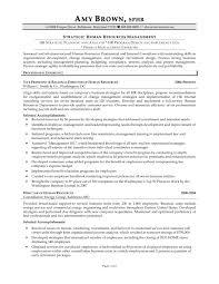 Resume Human Resources Resume Summary