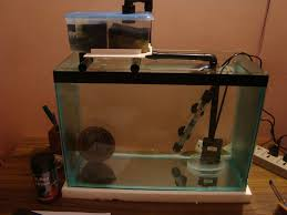 picture of the complete set up with the pump