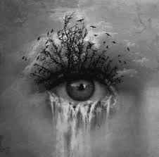 Image result for river of tears