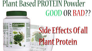 nutrilite all plant protein use benefits side effect amway powder amway all s
