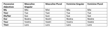 Possessive Adjectives Italian Language Exchange Amino