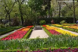 Como Ir Al Jardin Botanico Madrid