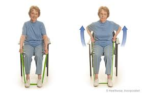 seated exercise rowing with elastic bands