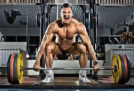 beginners bodybuilding routine