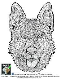 Animal Coloring Pages For Adults Hard Coloring Pages For Adults Hard