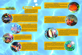 46 Creative Magazine Spread Design Layout Ideas For Your Page