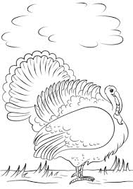 Small Picture Cartoon Turkey coloring page Free Printable Coloring Pages