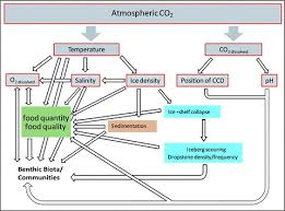 Flow Chart Of Causes Of Global Warming Flow Chart Of The Main Effects Climate Change Caused In The