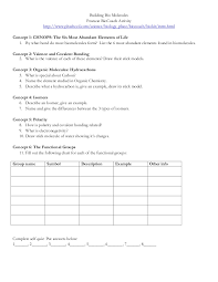 Biological Molecules Worksheet - Switchconf