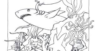 Attractive Inspiration Tropical Fish Coloring Pages Book Global Page
