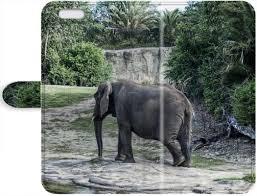 Amazoncom Dklzy Generic Elephant Quotes Leather Case For Iphone 7