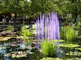 dale chihuly s monet pool fiori features lavender glass reeds among the water lilies and