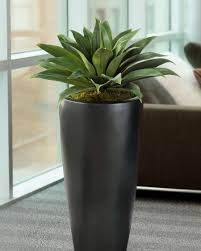 cheap office plants. Buy Beautiful, Lush, Carefree Silk And Artificial Plants For Cheap Office