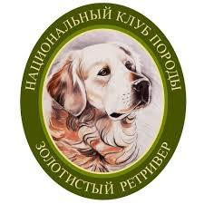 The <b>Golden Retriever</b> Club of Russia - Home | Facebook