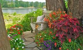 Easy Shade Gardening  Plants And IdeasContainer Garden Ideas For Shade