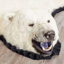 lion head rug pelt rug polar bear rug
