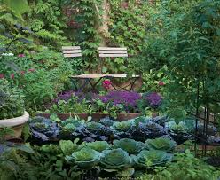 vegetable gardens can be as much of a destination as an ornamental garden photo ilration jennifer bartley