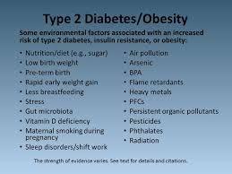 an essay on type diabetes