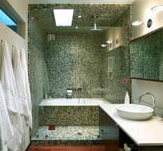 Models Bathroom Shower Tub Ideas View In Gallery Cippananda Interior Design Unique Bathtub Throughout Decorating
