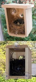 woodworking projects for kids bird house. a backless birdhouse that suctions to the window so you can see inside. woodworking projects for kids bird house s