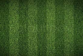 Soccer or football grass field Stock Photo Colourbox