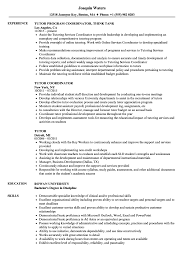 Sample Tutor Resume Tutor Resume Samples Velvet Jobs 2