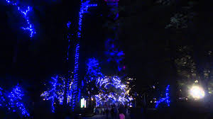 Kings Dominion Light Show - YouTube