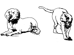 Small Picture Realistic Cat Coloring Pages Dog And Cat Coloring Pages Dog And