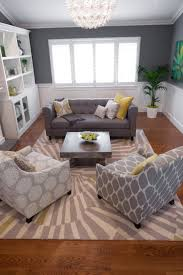 Zebra Rug Living Room Gray Zebra Rug Rugs Ideas