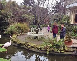 Rooftop Garden London Flamingos