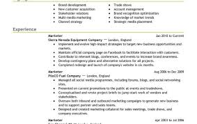 Interaction Designer Sample Resume Resume Sample Graphic Designer