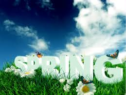 Free download hd & 4k quality beautiful nature photo wallpapers. 20 Stunning Spring Hd Wallpapers 2019 Themesurface