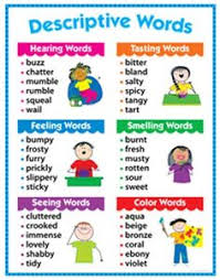 descriptive writing the secret knowledge of grown ups creative teaching press descriptive words chart gr 17 x 22 in toys hobbies educational reading writing