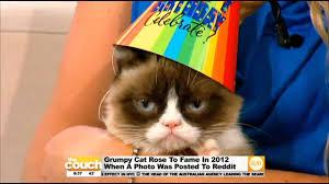 grumpy cat i had a birthday once. Modren Cat And Grumpy Cat I Had A Birthday Once R
