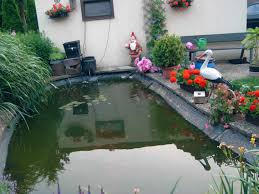 Unser Garten Mit Teich Kunstrasen Garten