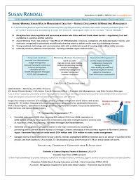 Business Development & Marketing Management Finance Resume Sample, Business  Development Resume Sample, Marketing Management